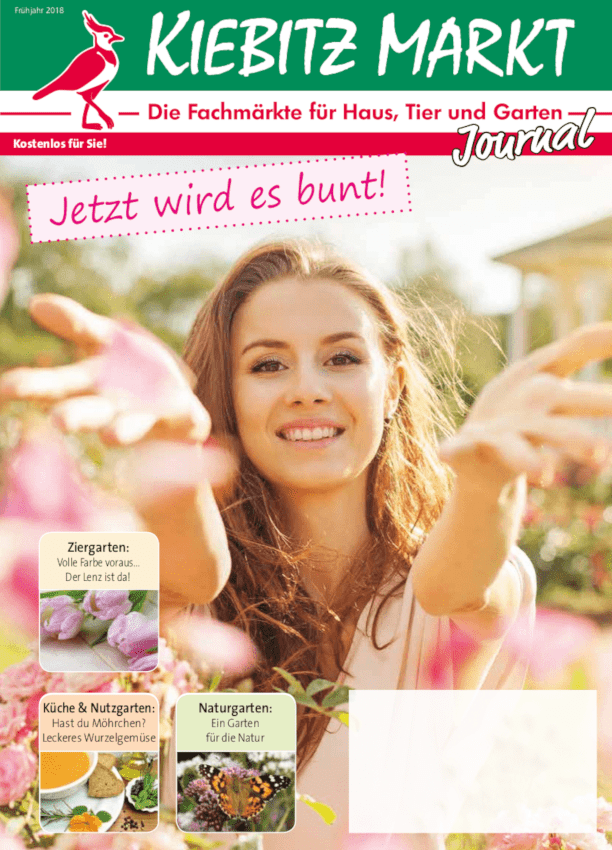 Kiebitzmarkt-Journal 2018.03